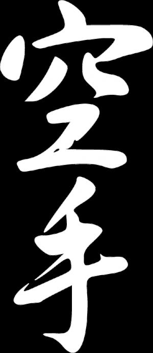 karate-300x689